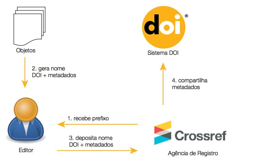 estrutura do doi